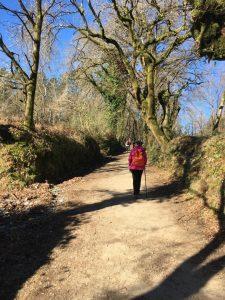santiago charity walk mind trail